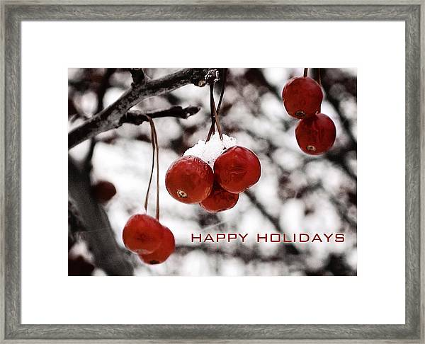 Happy Holidays Berries Framed Print