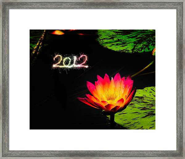 Framed Print featuring the photograph Happy New Year 2012 by Michael Taggart
