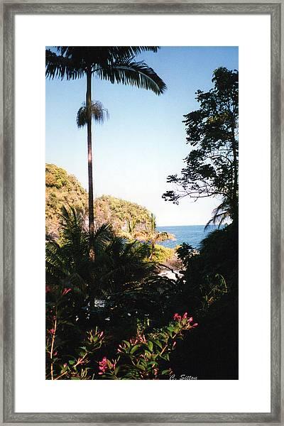 Hawaii Palm And Surf Framed Print