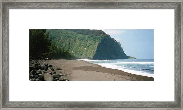 Hawaii Shore Framed Print
