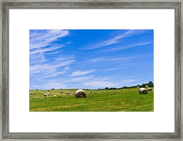 Hay Bales Under Brilliant Blue Sky Framed Print