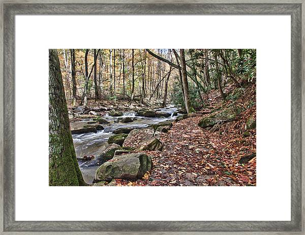 Hiking Trail To Cascade Falls Framed Print