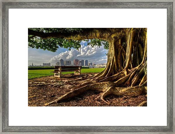 Hobbit Eyeview Framed Print