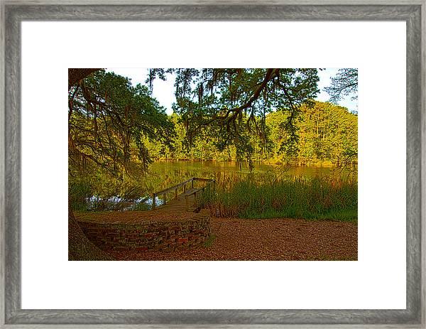 Hobcaw Barony Pond Framed Print
