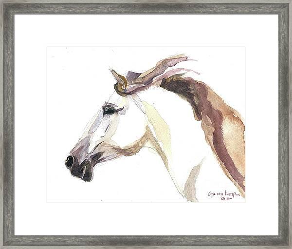 Horse - Julia Framed Print