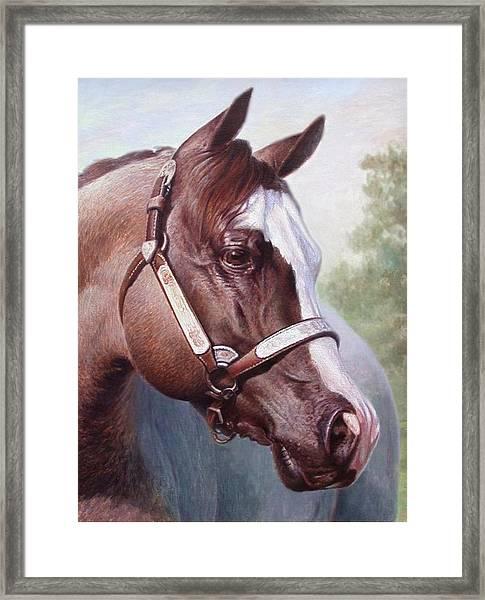 Horse Portrait 2 Framed Print