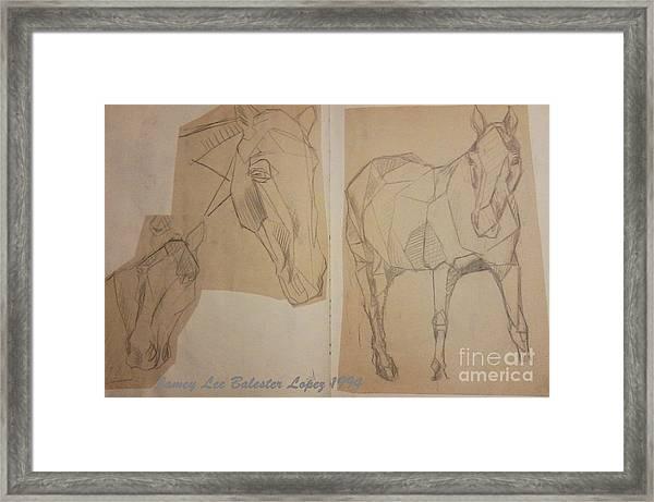 Horse Study Sketchbook Framed Print by Jamey Balester