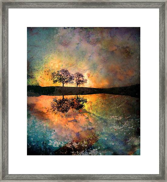 How Trees Reinvent The Morning Framed Print