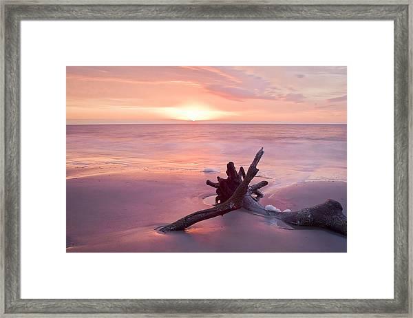 Hunting Island South Carolina Framed Print