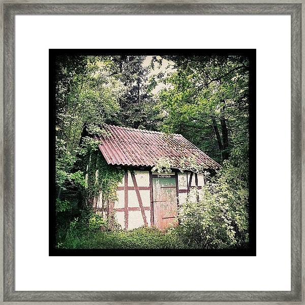 Hut In The Forest Framed Print