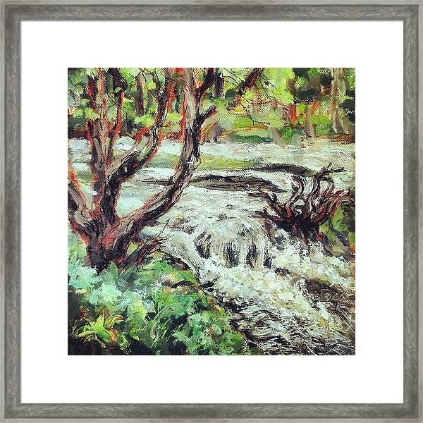 I Think I Finished That #river #hafren Framed Print