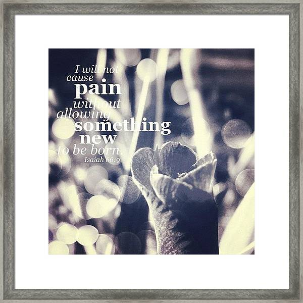 ...i Will Not Cause Pain Without Framed Print