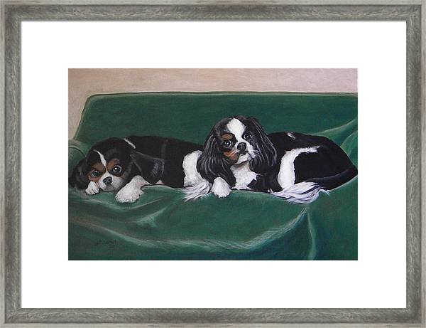 In The Lap Of Luxury Framed Print