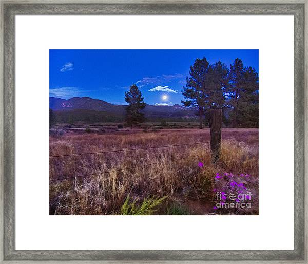 In The Twilight Framed Print