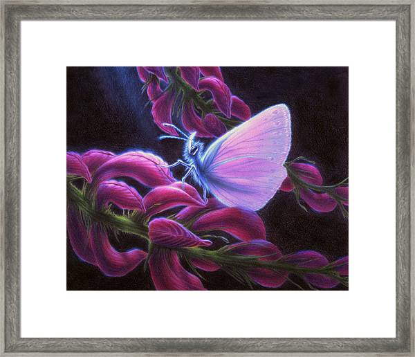 Inapertwa Simple Creatures Framed Print