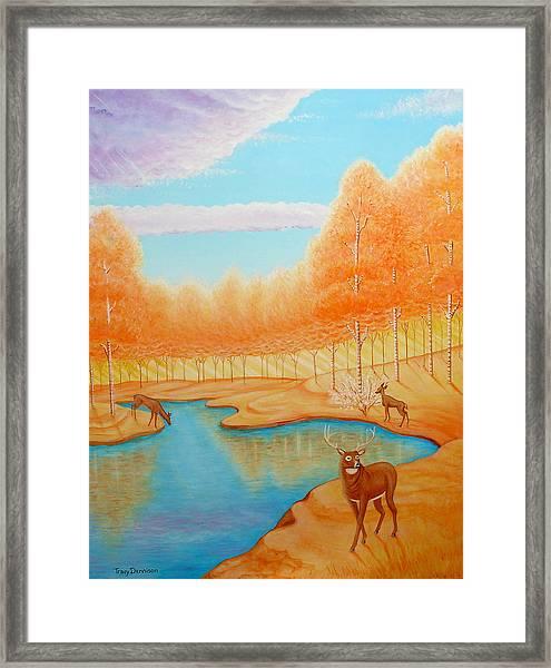 Indian Summer Framed Print