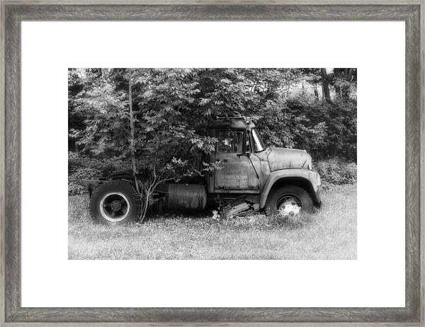International Tree Planter Framed Print