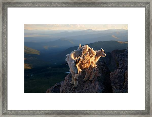 Two Faces West Framed Print