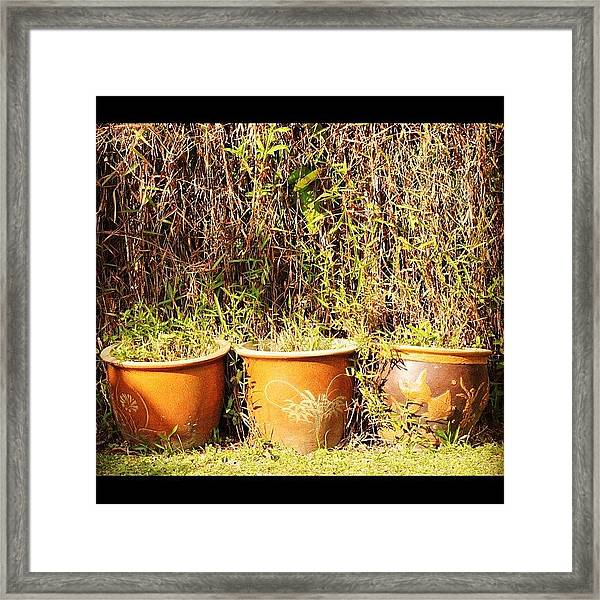 Invasion Of The Green, This Morning In Framed Print