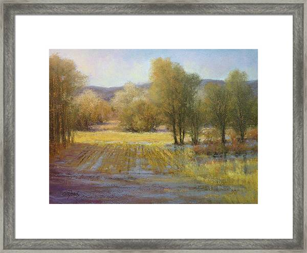 January Rains Framed Print by Paula Ann Ford