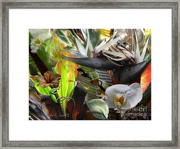 Jungle Bliss Framed Print