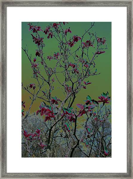Kimono Mix Framed Print