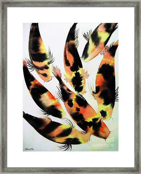 Koi Action Framed Print