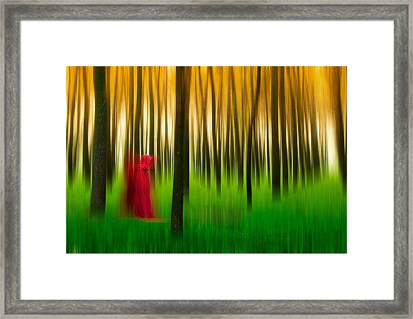 Lady In Red - 3 Framed Print