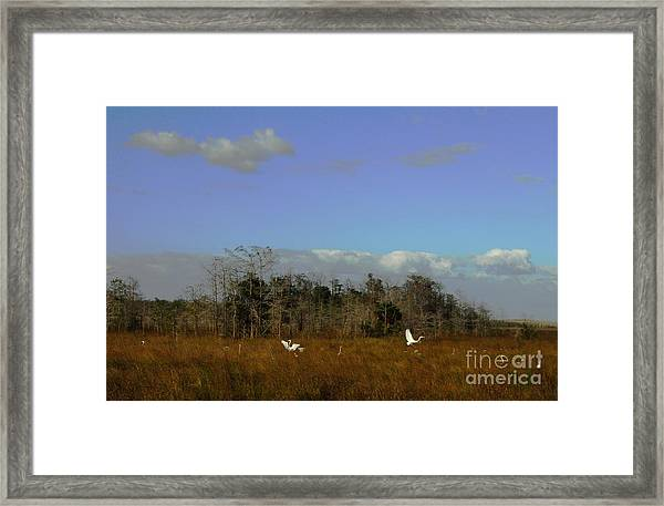 Lifes Field Of Dreams Framed Print
