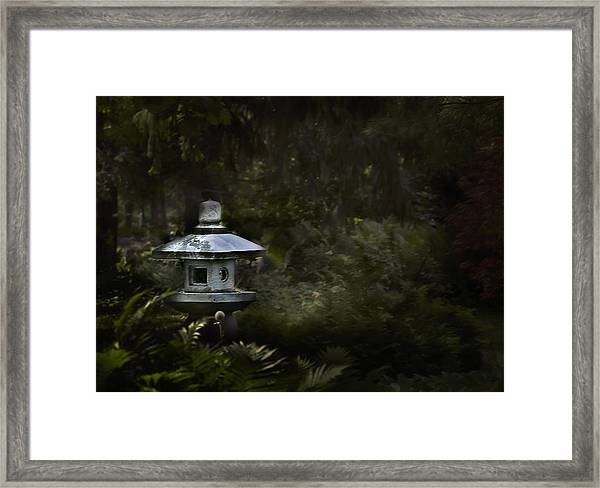 Light And Tranquility Framed Print