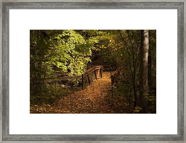 Light My Way Framed Print