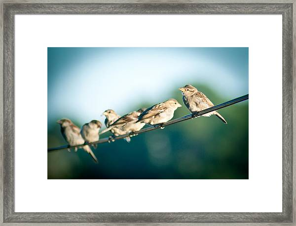 Lines Of Communication Framed Print by Jason Heckman