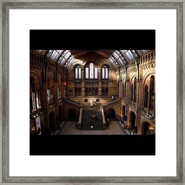 #london #nationalhistory #darwin Framed Print