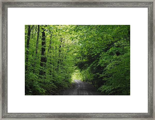 Long Lost Road Framed Print by April  Robert