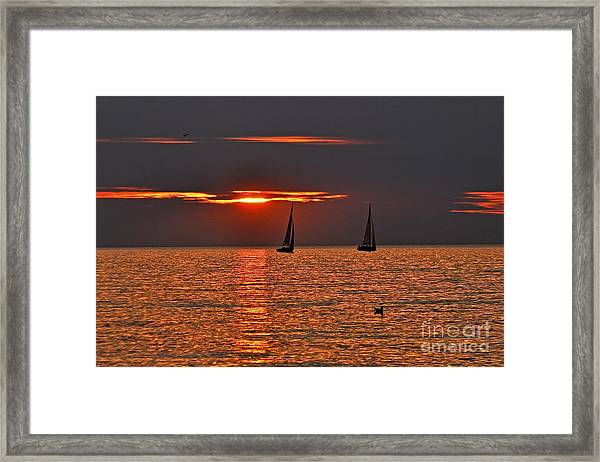 Coral Maritime Dream Framed Print