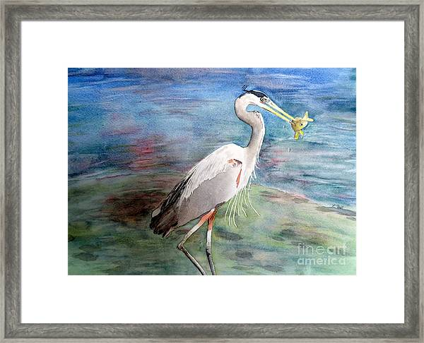 Lunchtime Watercolour Framed Print
