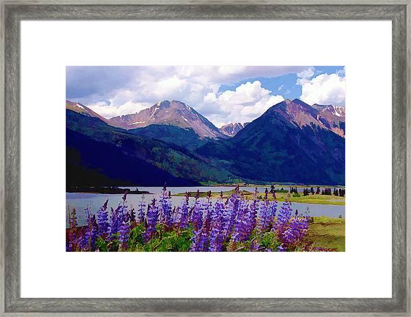 Lupine Lake Framed Print