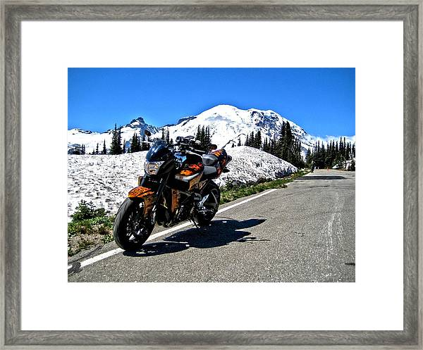 Machine And Nature Framed Print