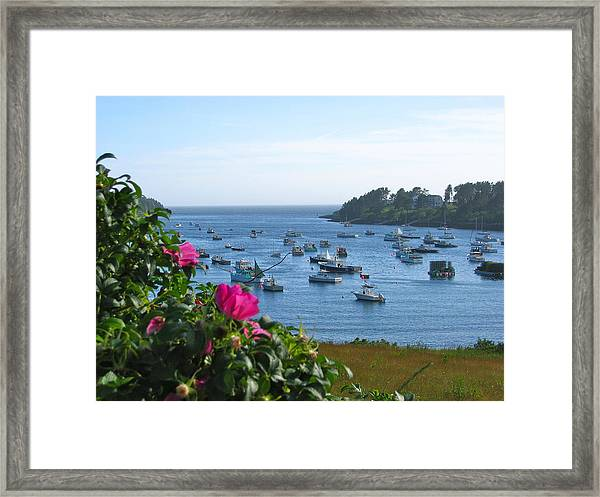 Mackerel Cove I Framed Print