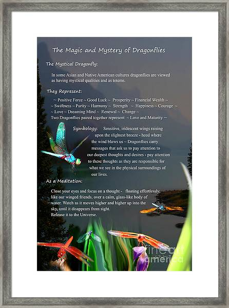 Magic And Mystery Of Dragonflies Framed Print
