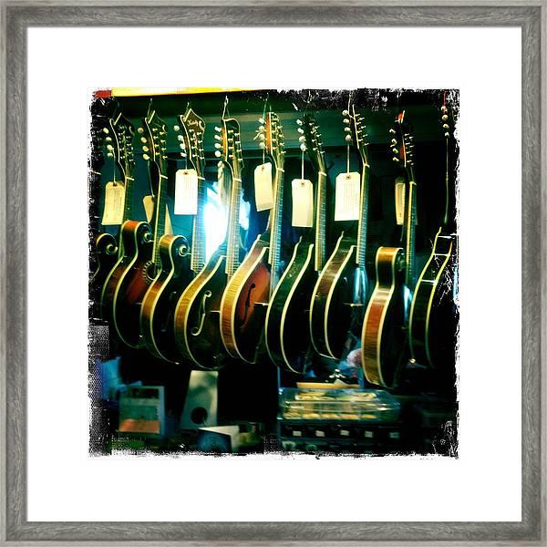 Mandolins Framed Print