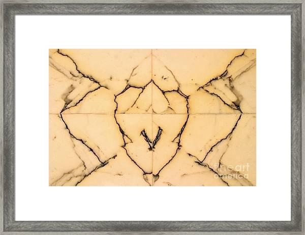 Marble Face Framed Print