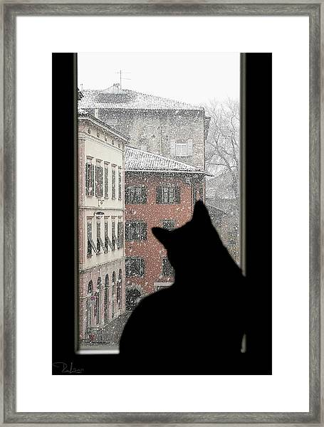 Melancholy Framed Print