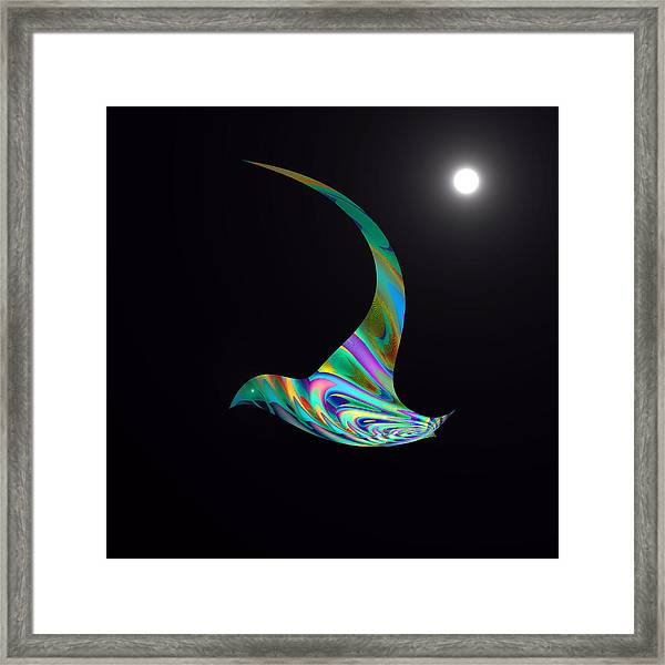 Framed Print featuring the digital art Midnight Flight by Visual Artist Frank Bonilla