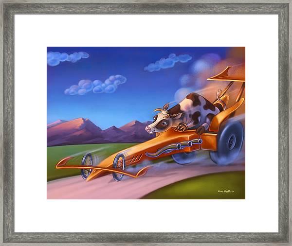 Minny Moo Gone Cruising Framed Print