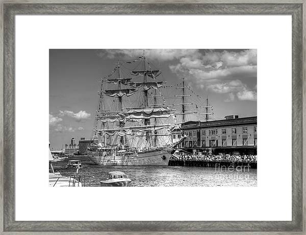 Mircea Framed Print
