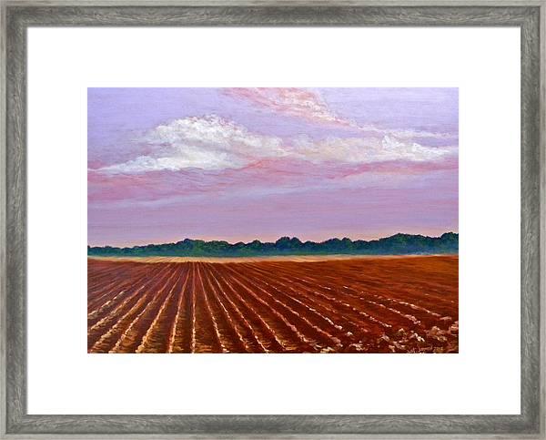 Mississippi Land And Sky Framed Print