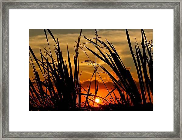 Mississippi Sunset At The Ross Barnett Reservoir 2 Framed Print