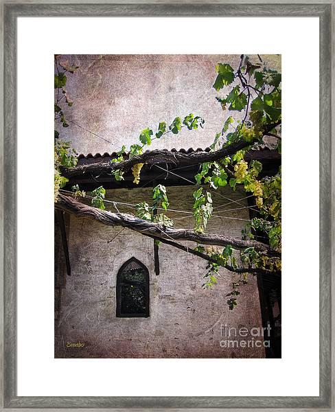 Monastery Garden Framed Print