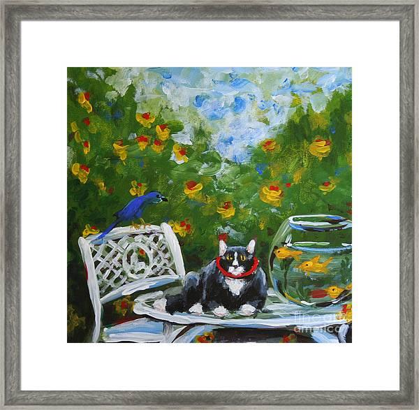 Monets Cat Framed Print by Stella Violano